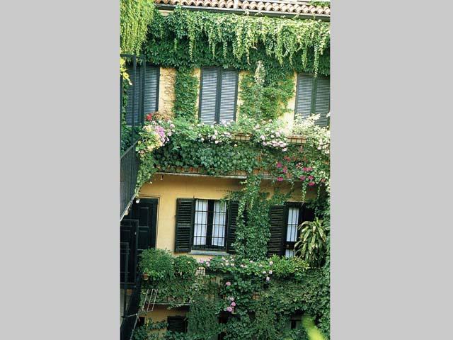 Tutto il verde di Milano