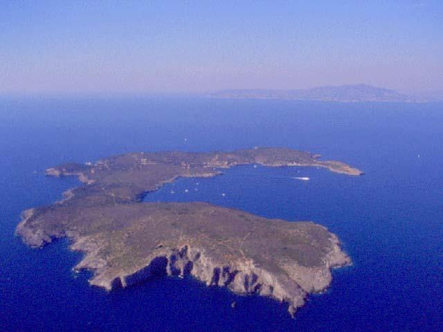 Giannutri, l'isola dei gabbiani