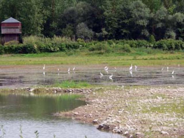 A tutta natura tra Alviano e Orvieto