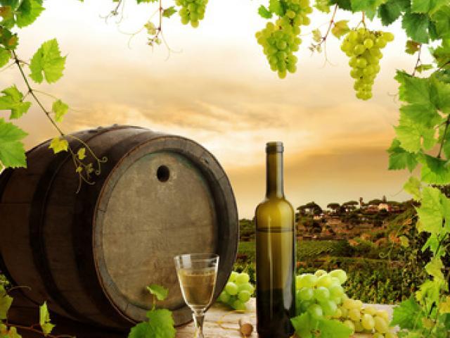 Il vino del Colleoni - Vino di Bergamo