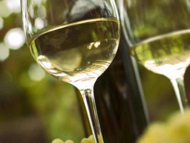 I vini dei Colli della Sabina