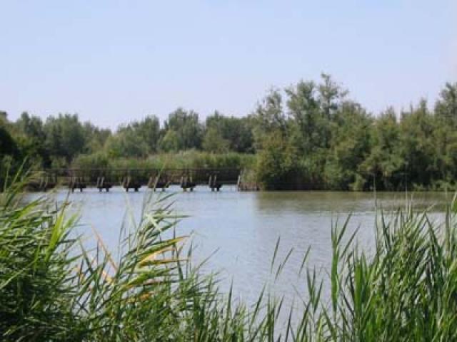 Comacchio, tra paludi e pesca
