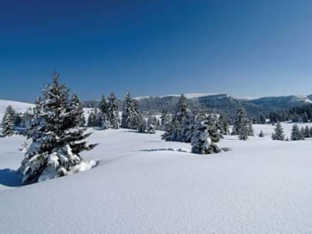 Con le ciaspole si scopre il Trentino