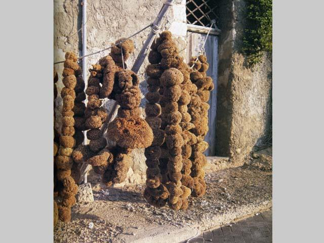 La lavorazione delle spugne a Lampedusa
