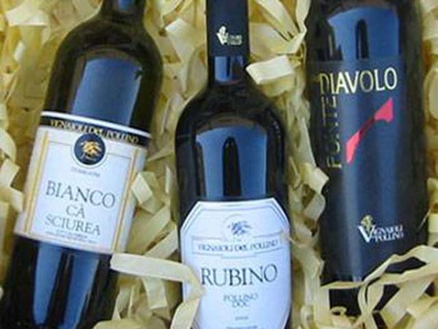Pollino Doc un vino di Cosenza