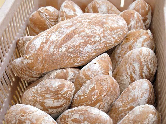 Pane toscano di Lucca