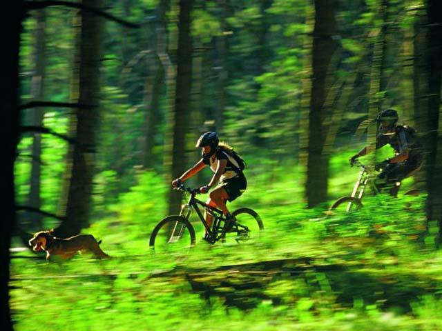 Montagne Olimpiche in mountain bike