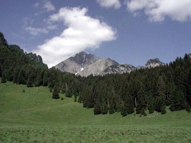 Scoprendo il Parco delle Dolomiti Bellunesi