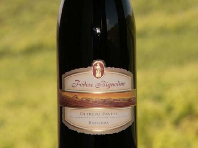 Oltrepò Pavese una mescolanza di uve per grandi vini