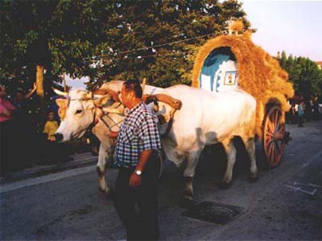 Artigianato e tradizioni in provincia di Avellino