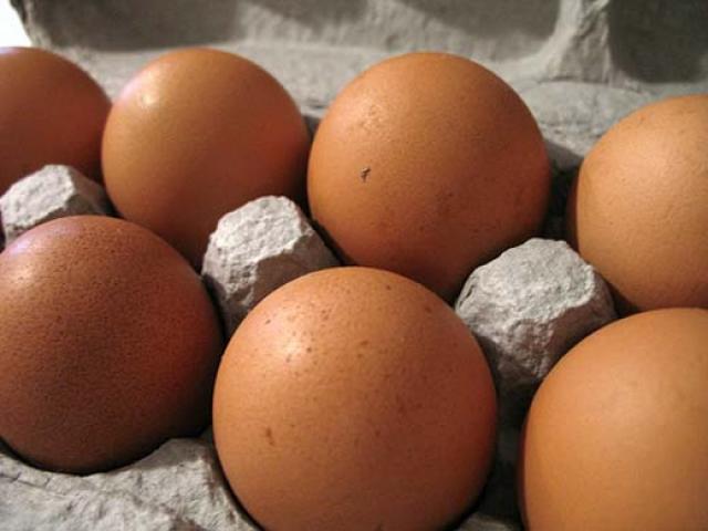 Le uova biologiche: scure sono più buone