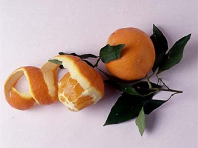 Le origini e le varietà del frutto dell'arancia