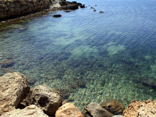 Fantastiche immersioni a Capo Rizzuto
