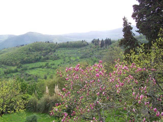 Trekking sui colli fiorentini