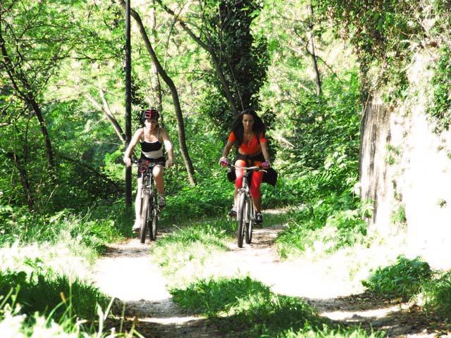 Gite in bici nella provincia di Pordenone