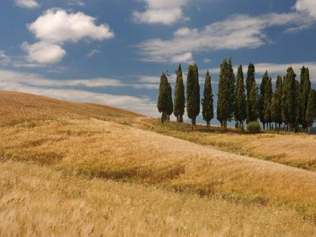 A Rapolano Terme, tra storia, arte e paesaggio