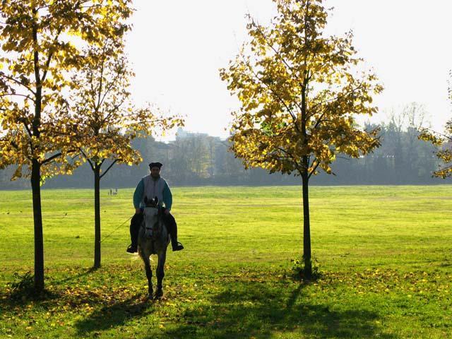 A cavallo nel Parco di Monza