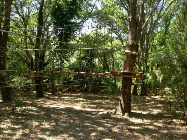 Originali percorsi nel Parco Avventura di Gianola