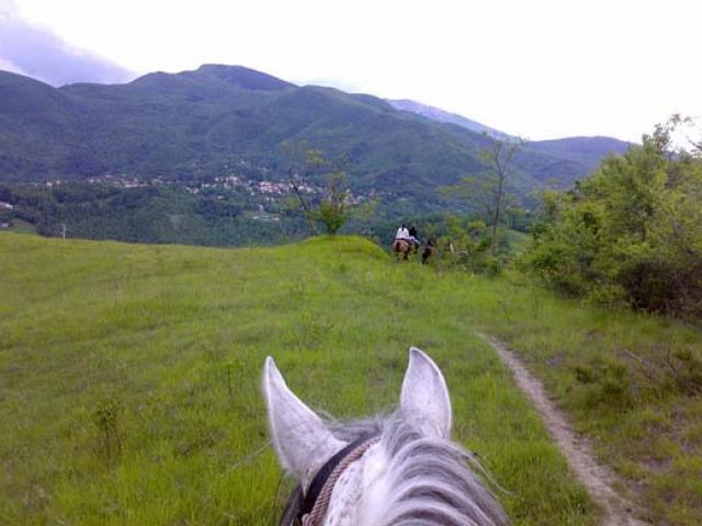 A cavallo in Val di Taro immersi nella natura