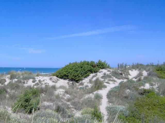 Giocare a golf a Tirrenia tra sabbia e acqua