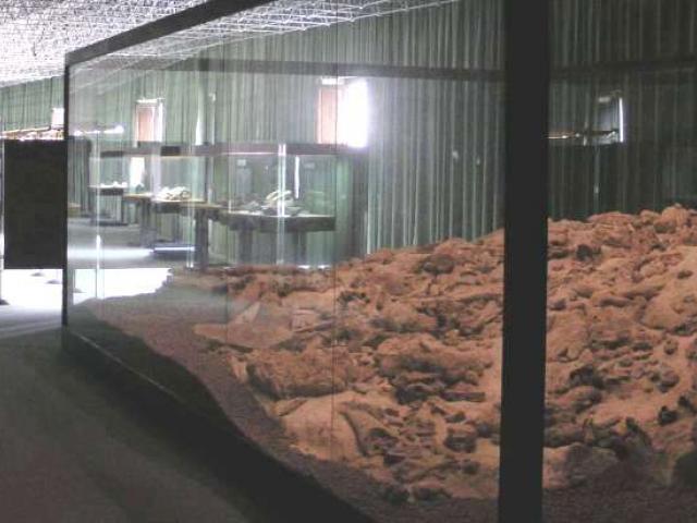 Isernia: Museo Paleolitico Nazionale