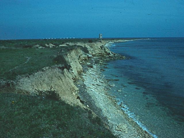 Parco naturale regionale Salina di Punta della Contessa