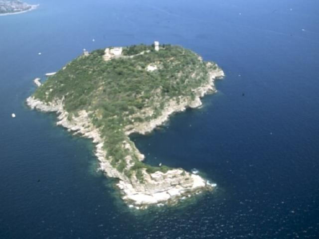 Riserva naturale regionale isola Gallinara