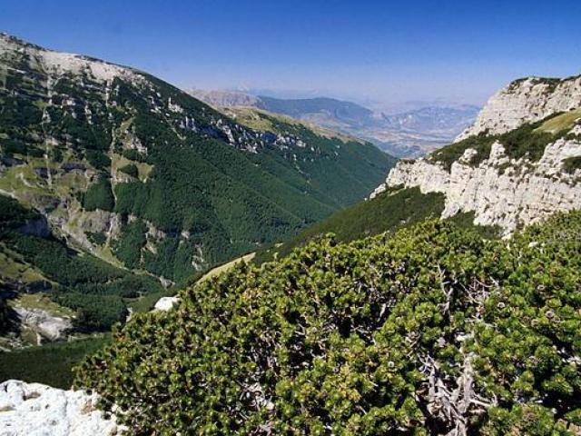 Riserva naturale statale Lama Bianca di S. Eufemia a Maiella
