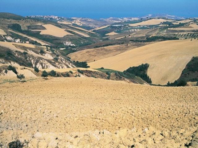 Riserva Naturale Regionale Calanchi di Atri