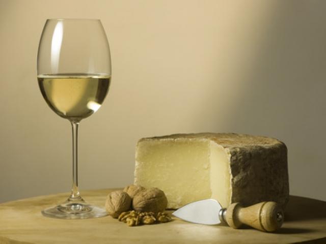 Il vino Molise