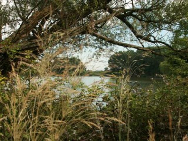 Riserva Naturale Lago di Falciano
