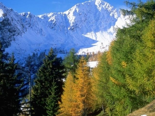Parco regionale delle Orobie Valtellinesi