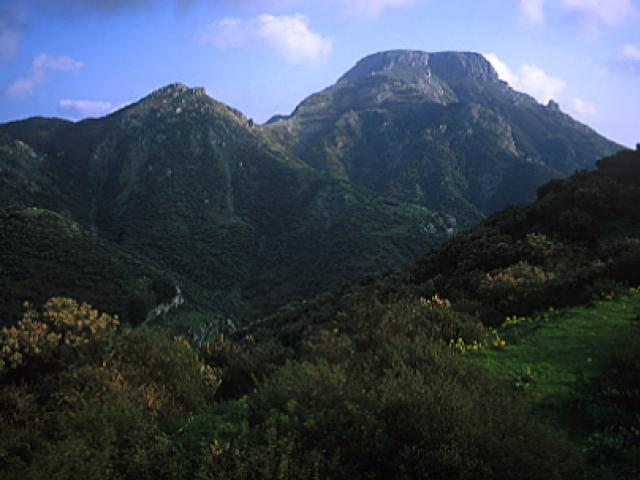 Riserva Naturale Orientata Fiumedinisi e Monte Scuderi