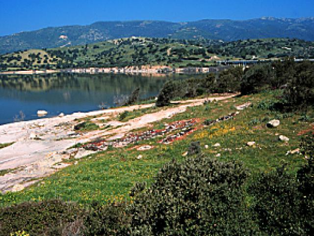 Il fiume e il lago Coghinas