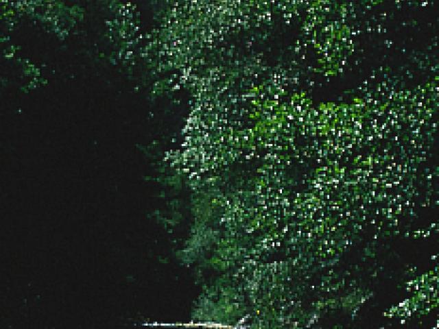 Parco Regionale Naturale delle Serre