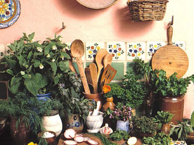 Erbe aromatiche sarde