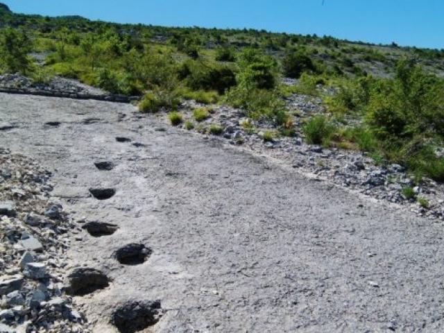 Il Cammino dei Dinosauri