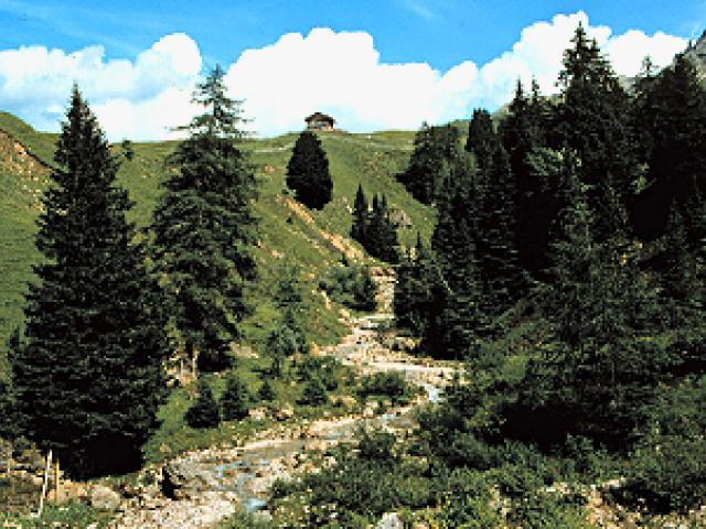 Parco Naturale Sciliar-Catinaccio