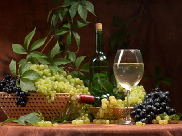 vini di Cuneo