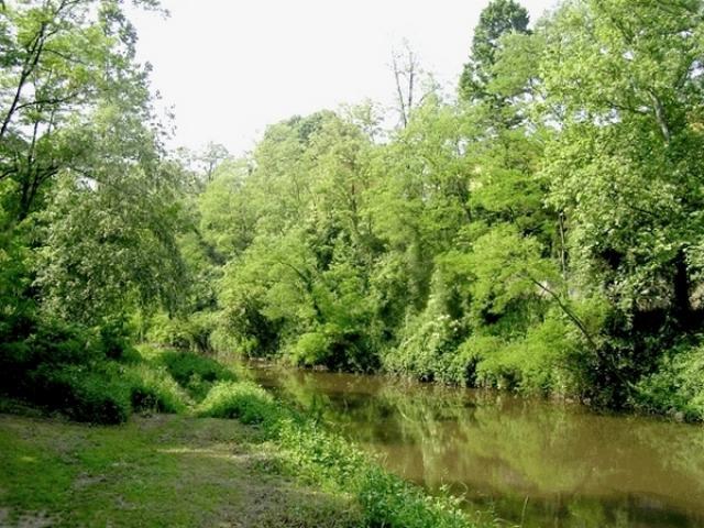 Rio Cantalupo