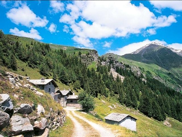 Capodolcino