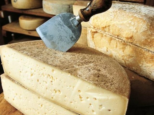 formaggio trentino