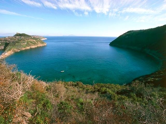 Isole flegree - Riserva Naturale Isola di Vivara