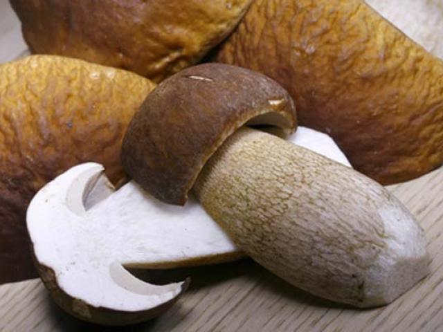 Funghi porcini marinati su crostoni caldi