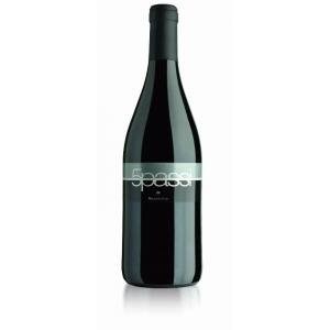 Vino rosso 5 Passi - Negroamaro IGT Salento