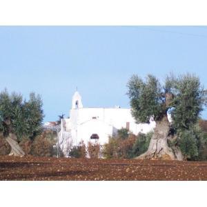 Buono acquisto a Polignano a Mare - Masseria del Crocifisso