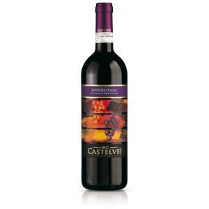 Vino rosso - Barbera d'Alba DOC 2011