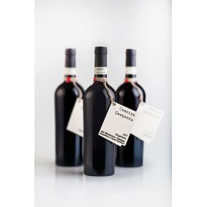 Vino rosso - Grignolino del Monferrato Casalese 2011