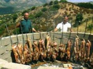 Carni essiccate