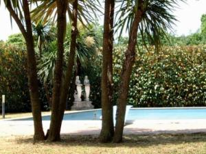 Immobiliare Metroquadro- piscina in giardino